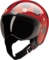 15-210_red_black_ladybug